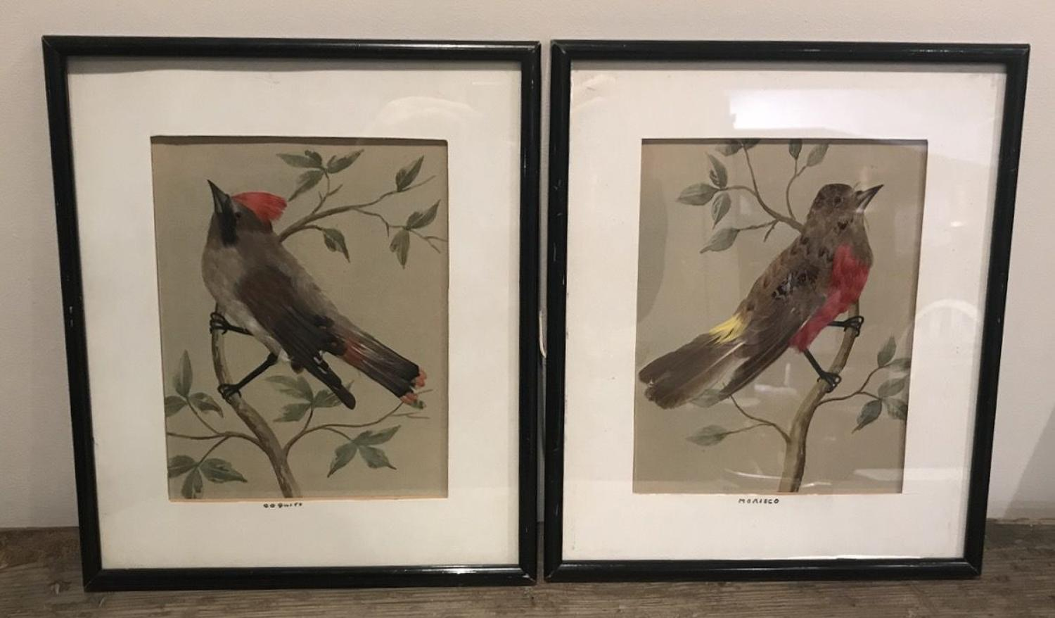 PAIR OF REAL FEATHER BIRD PICTURES