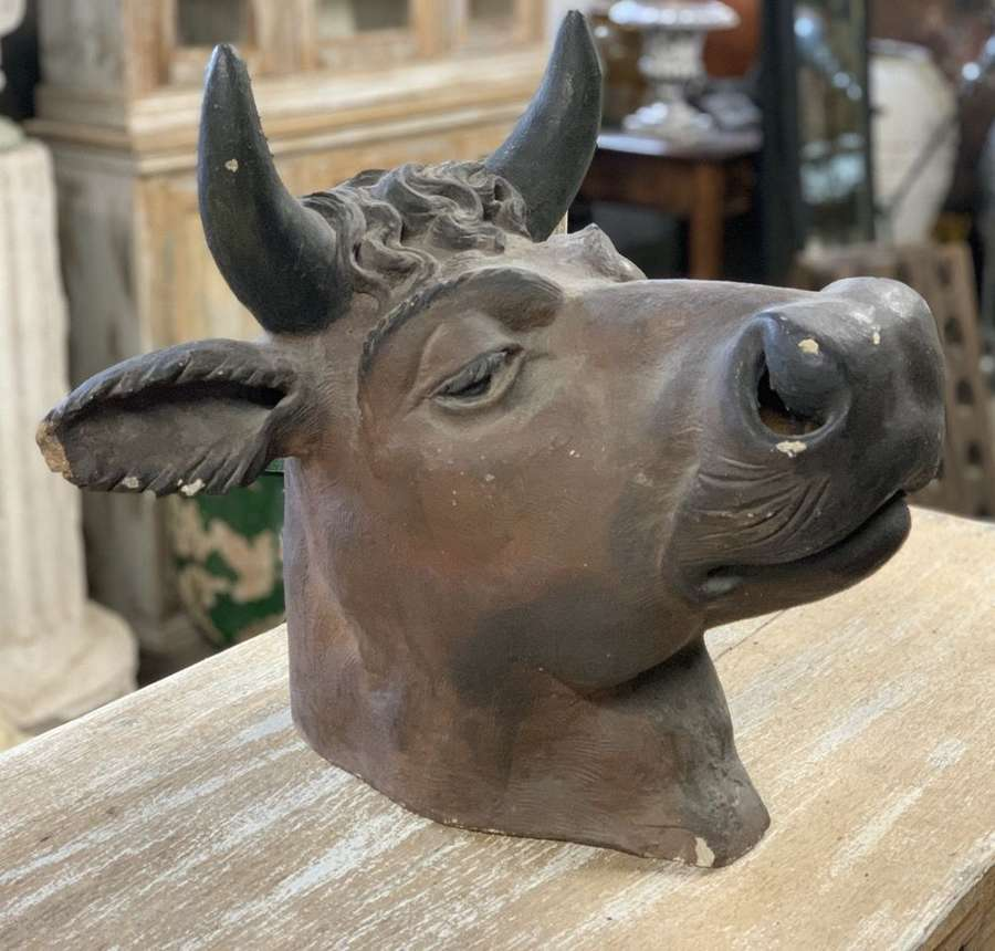 19TH CENTURY BUTCHERS COW HEAD